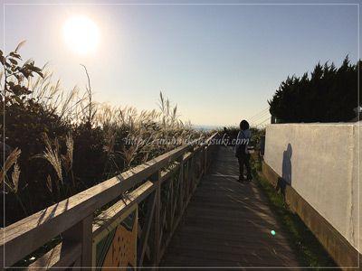 城ヶ島灯台横の遊歩道から見られる景色