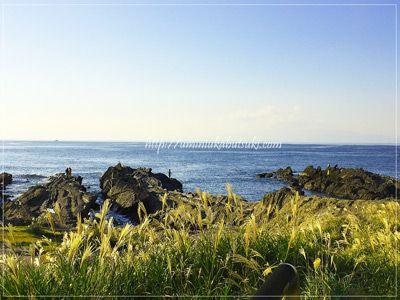 城ケ島の南側に広がる相模湾