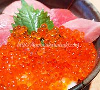 三崎漁港観光スポットのご紹介!寿司ランチもお土産もマグロ三昧