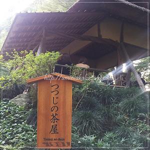 六義園の奥深くにある、つつじの古木材で建てられた「つつじの茶屋」
