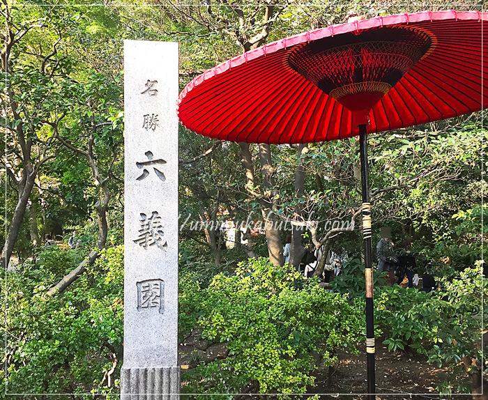 紅葉シーズンを迎えた六義園!混雑を避ける観光方法と見どころとは?