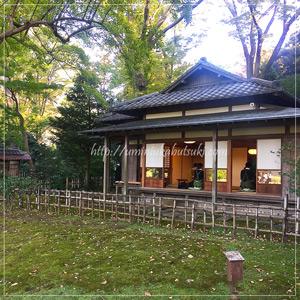 庭園内で催されていた「日本茶文化講座」