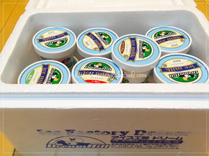 北海道河東郡上士幌町から届いたふるさと納税返礼品のアイスクリーム