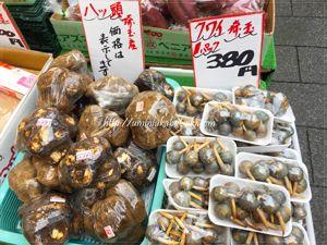 お正月料理に使われる高級食材の八ツ頭とくわいも買いやすい価格