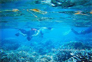 ダイビングスポットで世界的に有名な、セブ島最南端に浮かぶスミロン島。