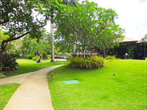 南国リゾートを満喫できる緑豊かな庭園