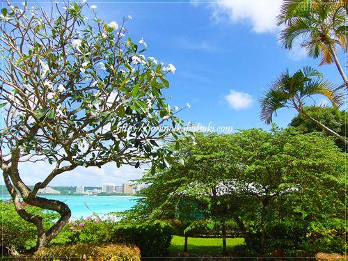青空と海がキレイなグァムの画像
