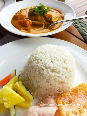 マレーシアの絶品カレー。どこに行っても美味しい。
