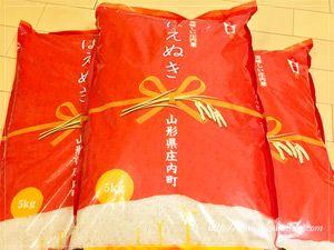山形県庄内町から届いた返礼品のお米「はえぬき」