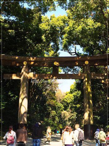 都内パワースポットランキング1位の明治神宮の、南参道入り口の鳥居。