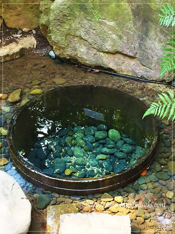 都内パワースポットランキング1位の明治神宮にある、加藤清正が掘ったとされる清正井。