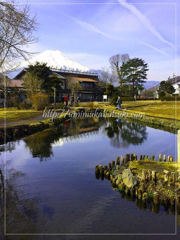 初夏にはキショウブが咲き誇る八番霊場の菖蒲池