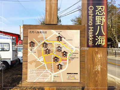 世界文化遺産忍野八海(oshinohakkai)の全体地図(出口池以外)