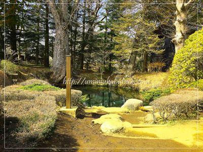 パワースポット忍野八海(oshinohakkai)の中で唯一有料施設の中にある三番霊場底抜池。