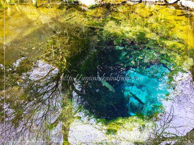 一部だけが深くなっている二番霊場お釜池。