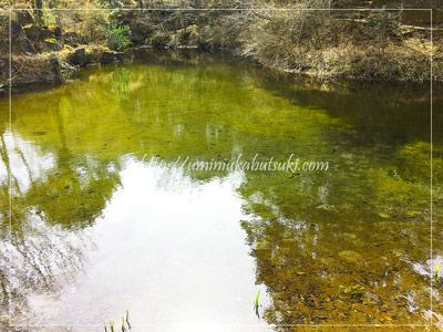 出口池には出口稲荷大明神の神社も祀られている。