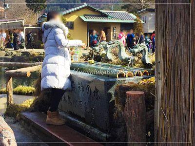 忍野八海の中池では、富士山の湧水を無料で飲んだり汲むことができる。