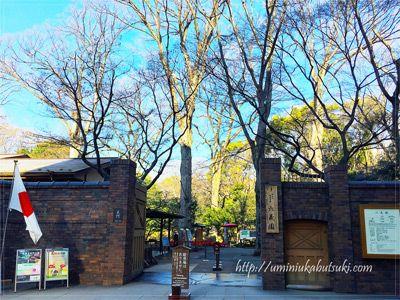 都内のしだれ桜の名所六義園には、イベント時は「正門」から入るのがおすすめ。