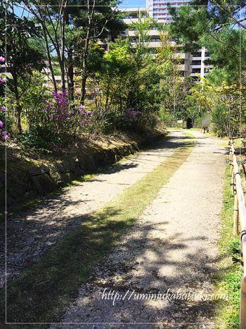 ギャザリア・ビオガーデンの散歩道。
