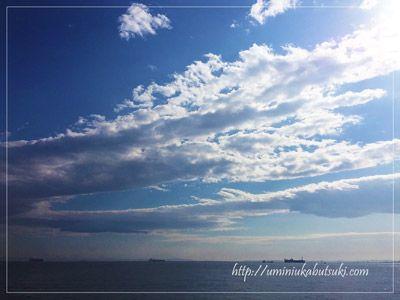 東京湾の意外な広大さを見ることができる海岸沿い。