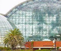 雨の日に東京都夢の島熱帯植物園にお出かけしたら意外に大人も遊べた理由