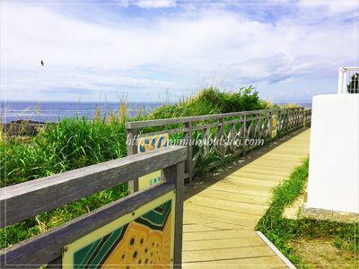 城ヶ島灯台の脇を歩ける遊歩道。ここから見る眼下の海は絶景。