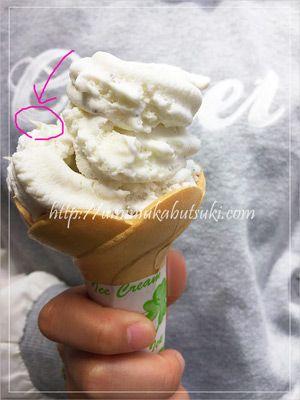城ヶ島で見つけた奇妙なデザート「しらすアイス」。