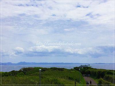 城ヶ島公園の先にはアジサイ園と安房崎(あわさき)灯台がある。