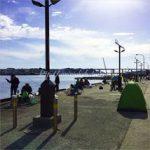城ヶ島で子連れに便利な釣りポイントと釣り堀!釣果や休日の混雑状況は?