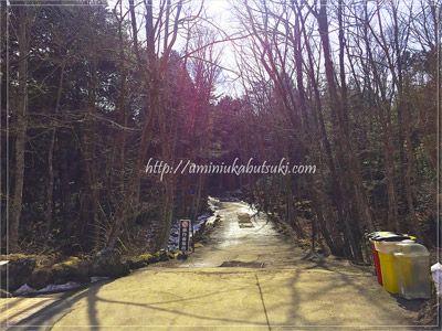 国道139号線から青木ヶ原の樹海に伸びる林道。