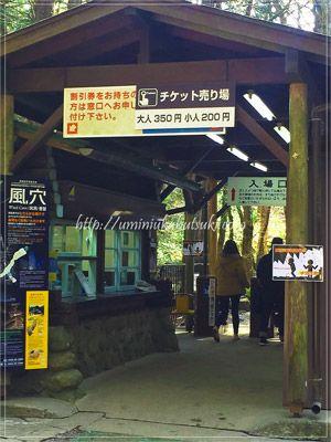 関東地方の穴場的な避暑地の1つの富岳風穴入り口。