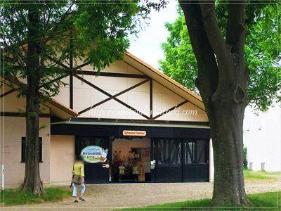 歴代のシルバニアファミリーが大集合しているシルバニアファームあそびのお部屋。