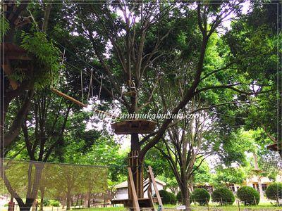自分でロープを付け替えながら高さ3mの場所を移動していくこもれびアドベンチャー。