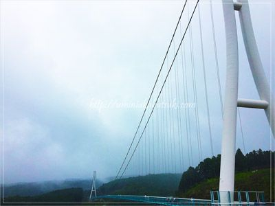 三島スカイウォークの中央には橋の真下が見える金網が貼ってあり、360度の景観が愉しめる。