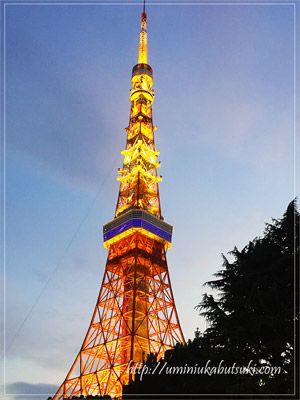 夕暮れ時になるとオレンジ色の幻想的な姿を見せる東京タワー。