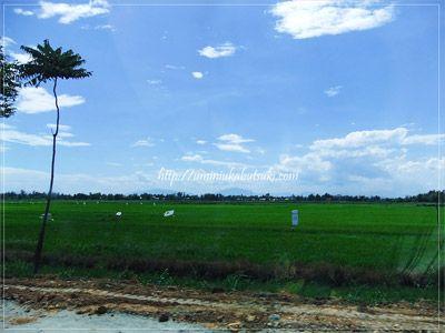 ダナン国際空港からホイアンの街までの道中は、長閑な田園風景が広がる