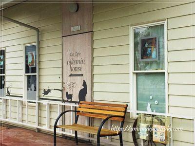 ジョンソンタウンの中にある猫カフェ