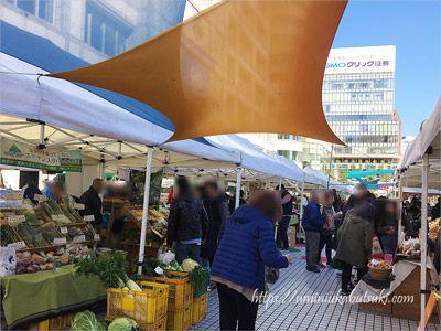 東京の青山・国際連合大学前の広場で開催されているオーガニックマーケット