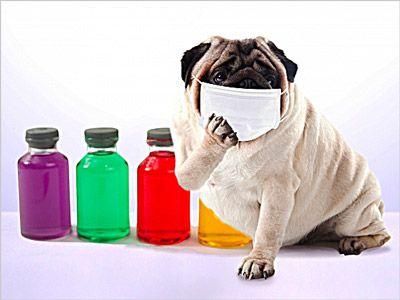 家族の中でインフルエンザの疑いが出たらすぐにマスクを使うのが、うつらない方法ではとても大切なポイント