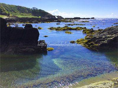 透明度の高い三浦半島の城ヶ島の海