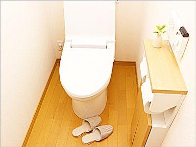 トイレの掃除もこっそりしておく