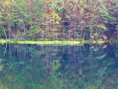 少し角度を変えるだけで湖面の表情も変わる絶景の御射鹿池