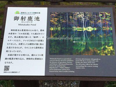 関東近郊から日帰りで行けるドライブスポットの御射鹿池(みしゃかいけ)