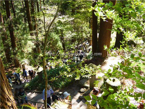 ステップが高く湿った階段が時々ある山寺観光にはスニーカーがおすすめ