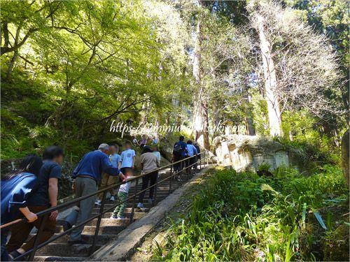 長い階段に観光客が連なる5月の山寺立石寺
