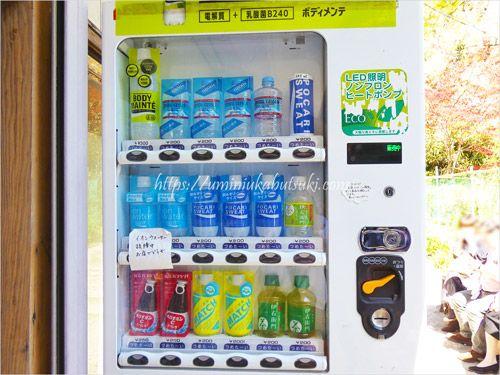 山寺山頂にある自動販売機の飲み物は少量で割高