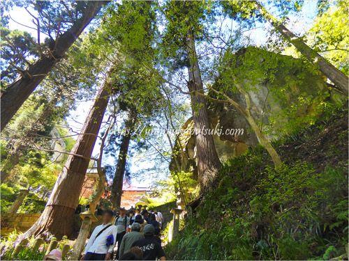 山寺立石寺へは森林の中を登っていく階段が多い